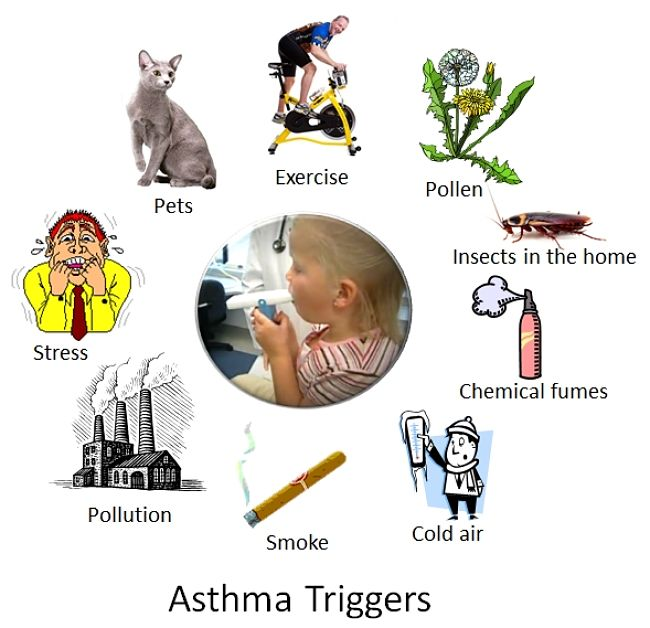 Triggers causing Asthma attacks. Discover why many children outgrow the symptoms in this article