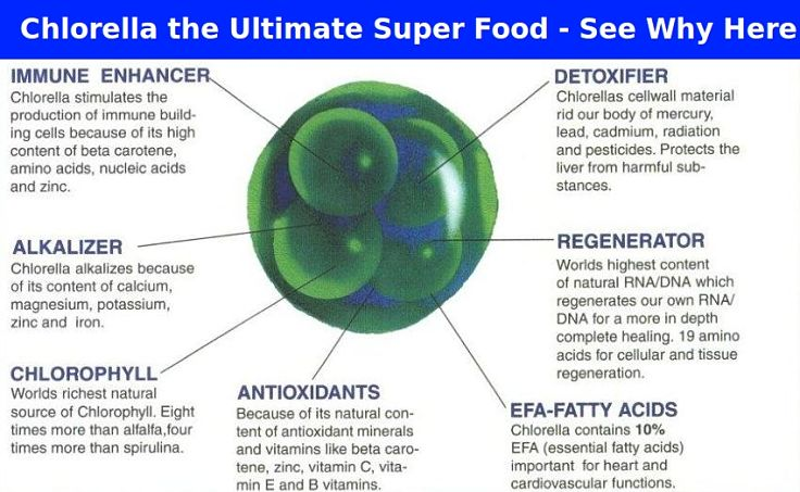 Chlorella the ultimate Superfood