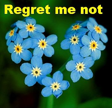 Regret me Not