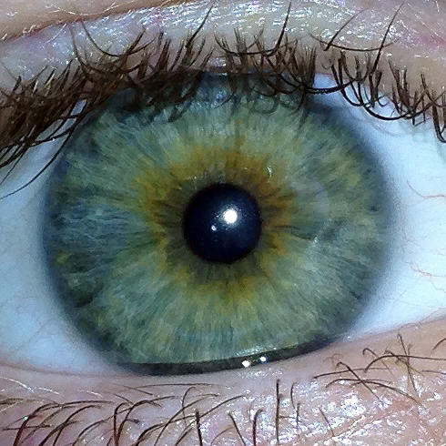 Looking deeply into eyes is like staring into a black hole - Nothing comes out!