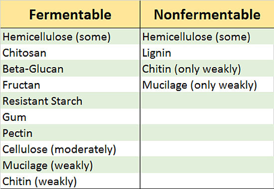 Table summarizing fermentable and Nonfermentable Fiber in foods which is mostly carbohydrate. Fermentable (Indigestible) Carbohydrates are the key for dietary benefits.