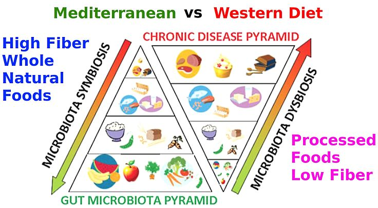 Western diets with low fiber and high levels of processed foods are much less healthy than Mediterranean dietary foods that are high in fiber and support gut microbiota.