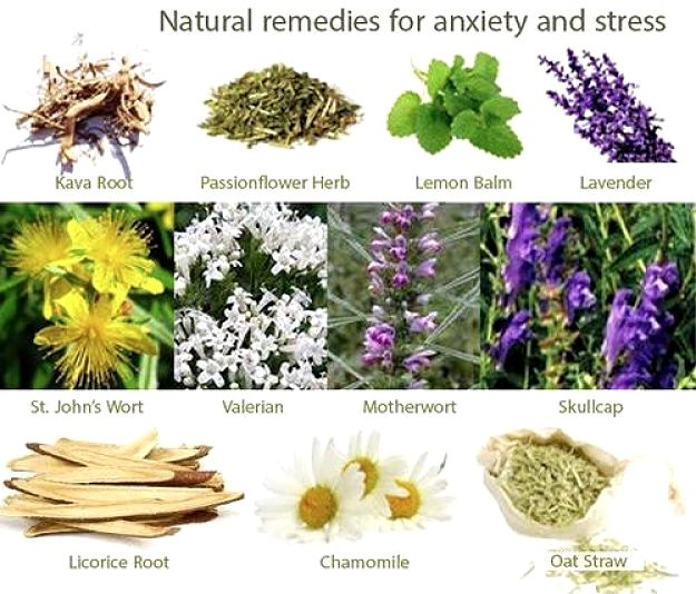 Natural Remedies for Anxiety and Stress